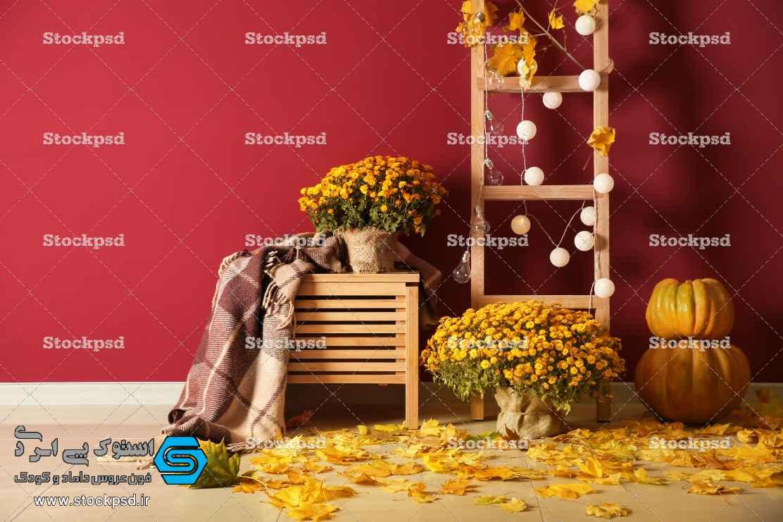 دانلود بک گراند پاییز آتلیه
