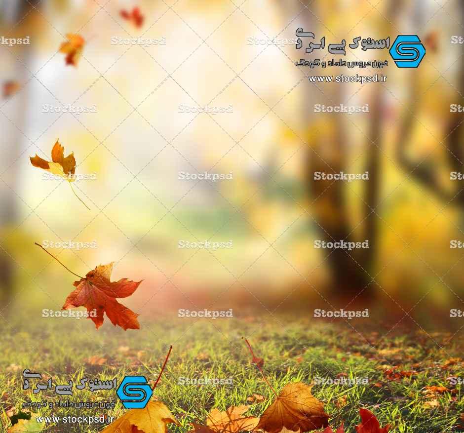 پس زمینه پاییز برای طراحی عکس کودک
