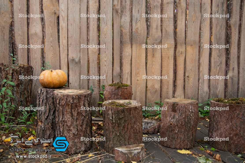 دانلود بک گراند پاییز و هالووین