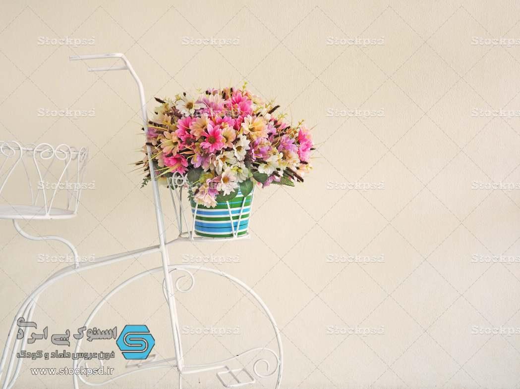 بک گراند عکاسی چرخ گل