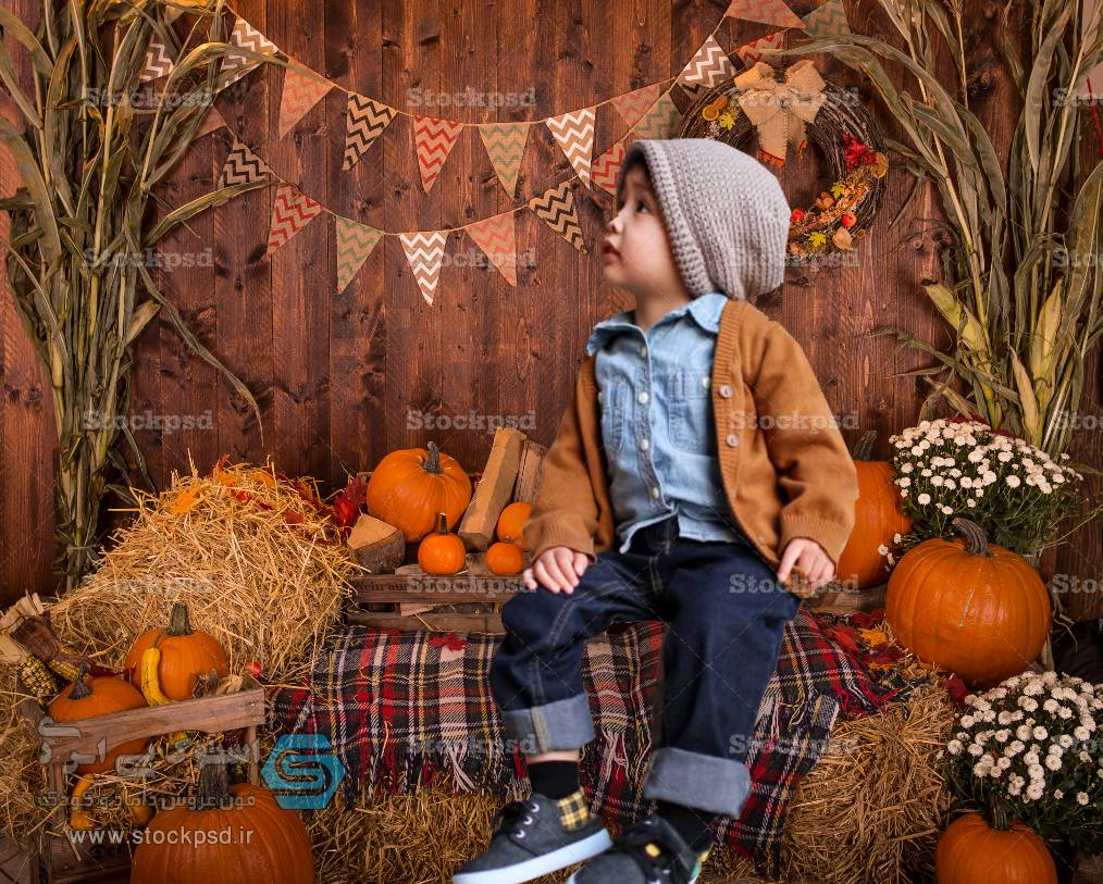 بک گراند طراحی عکس پاییز